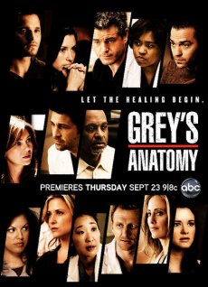 Анатомия страсти (9 сезон) Grey's Anatomy (2012)
