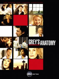 Анатомия страсти (сезон 11) / Grey's Anatomy, 2014