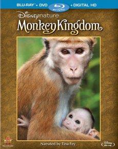 Скачать Королевство обезьян через торрент