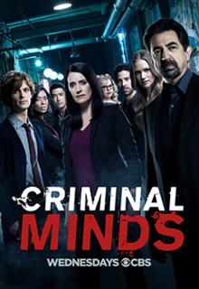 Мыслить как преступник [13 сезон, 1-13 серии из 22] (2017) / Criminal Minds