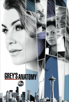 Анатомия страсти [14 сезон] (2017) / Grey's Anatomy